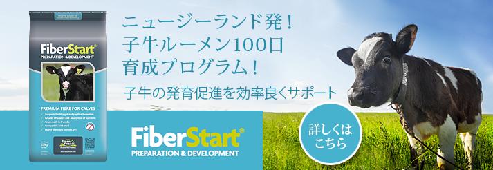 FiberStart(ファイバースタート)