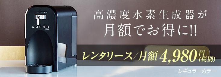 レンタリース月額49800円